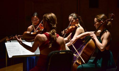 String quartet summer programs at Bowdoin Music Festival